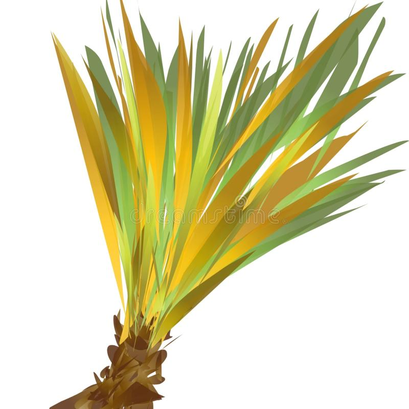 Grass Png Dry - Transparent Background Tall Grass Png , Free Transparent  Clipart - ClipartKey