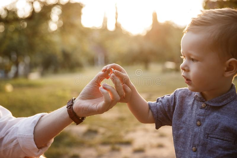 A picture of child taking food from parent`s hand. He is looking at it. Kid is concentrated. Evening is coming royalty free stock photo