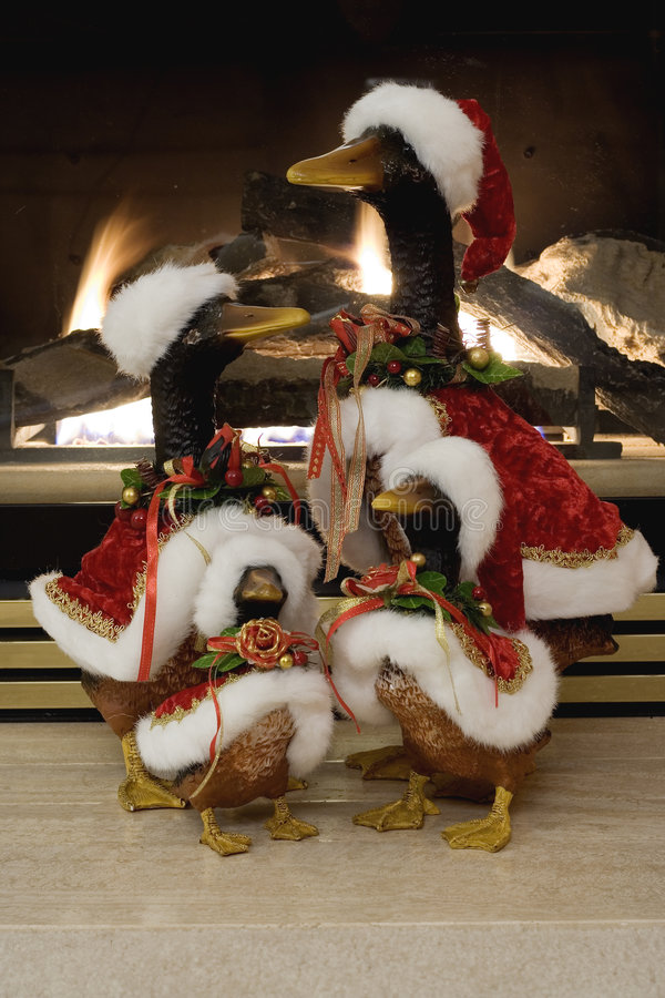 Picture Of Christmas Ducks Stock Image Image Of Burn