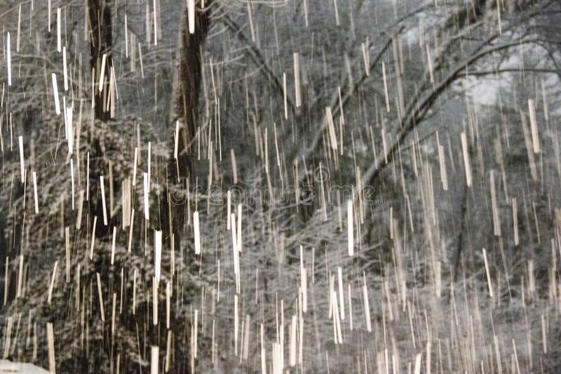 Falling snow in the winter in New England stock images