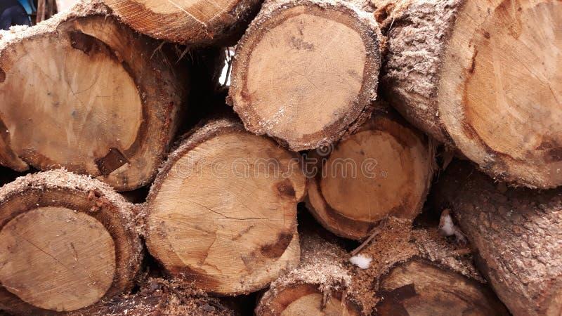 Firewood texture royalty free stock photo