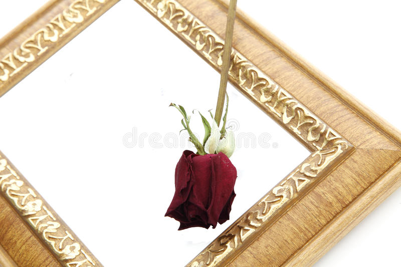 Download Picture frame stock image. Image of furniture, carved - 22094777