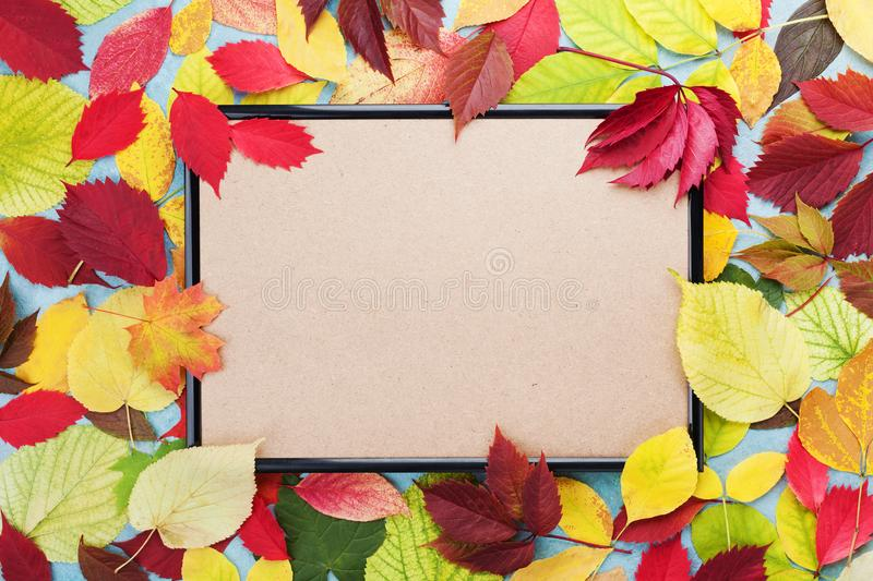 Picture frame and autumn leaves around top view. Mockup for fall sale. Copy space for text. stock image