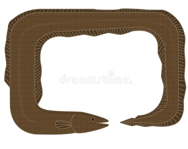 Frame - the eel. In the picture is a frame of the eel. It is colored, brown. Inside is a space for text royalty free illustration