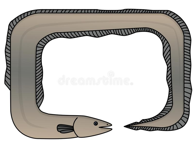 Frame - the eel. In the picture is a frame of the eel. It is colored. Inside is a space for text stock illustration