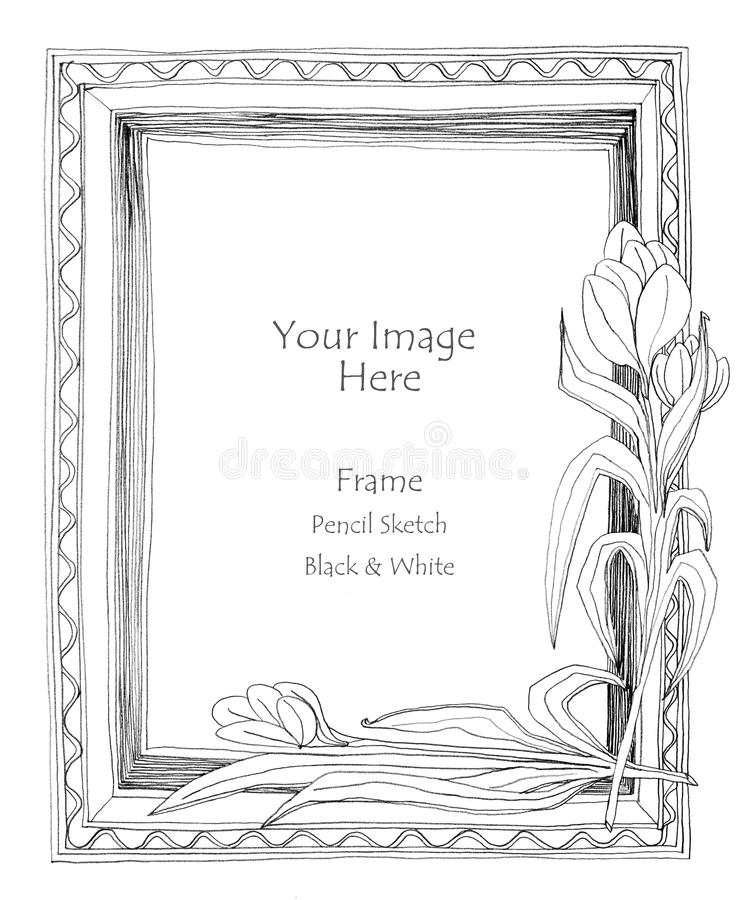 Picture frame flower pencil sketch stock illustration