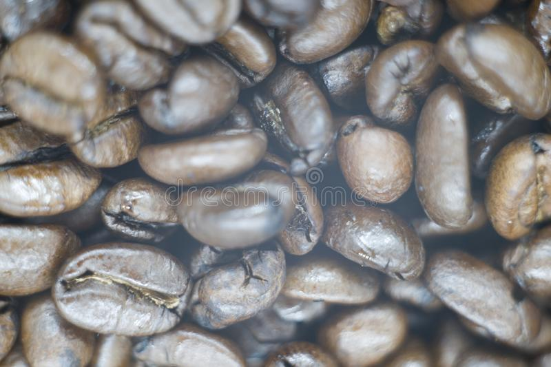 A picture of a fresh coffee beans stock photos