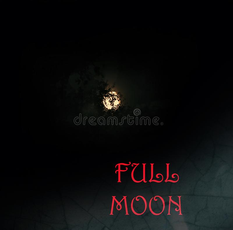 Picture full moon in darkness royalty free stock photo