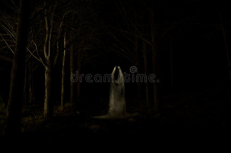 Ghost in the dark forest. Picture of a ghost in the middle of the forest with total darkness and made using the lightpainting technique stock photo