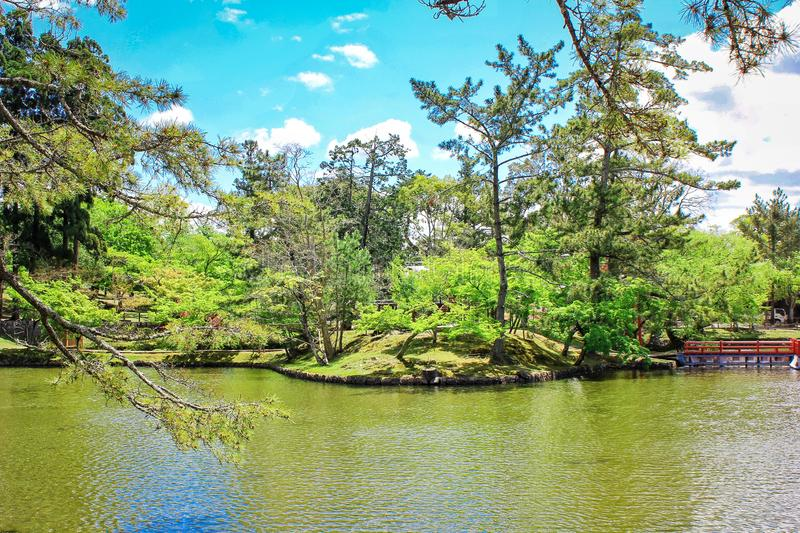 Picture of green calming, refreshing lake located in Nara Park, one of travel or tourism destination in Japan. Picture green calming refreshing lake located nara stock photography