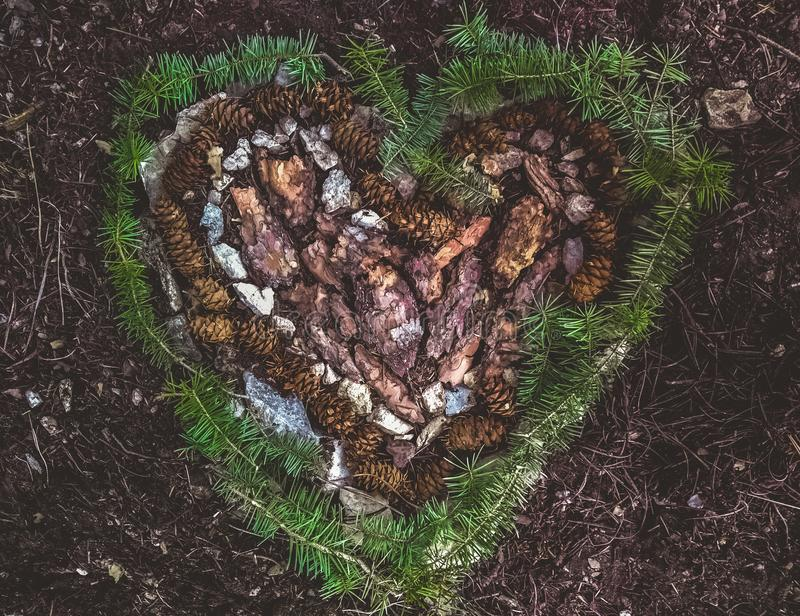 Heart shape made out of pine bark, pine cones, rocks and loose foliage royalty free stock images