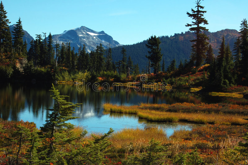 Picture lake. And reflection of mt shuksan, mt baker park royalty free stock images