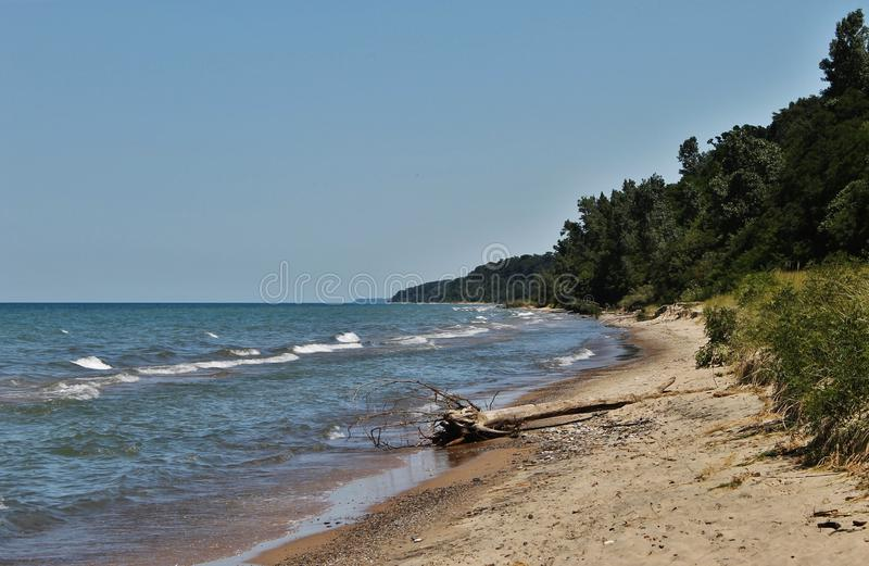 Wild Beach royalty free stock images