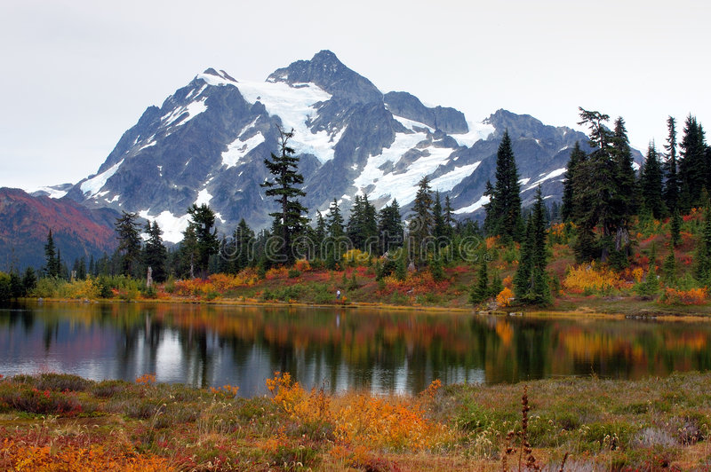 Picture lake at mount Baker. Fall foliage at Picture Lake royalty free stock images