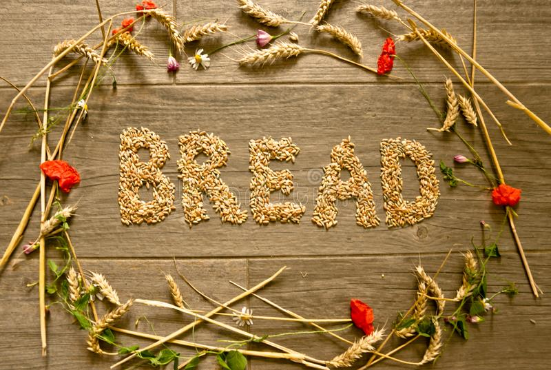 """A picture layed with cereals in form of a collar for Thanksgiving inside is the word """"Bread"""" designed. royalty free stock image"""