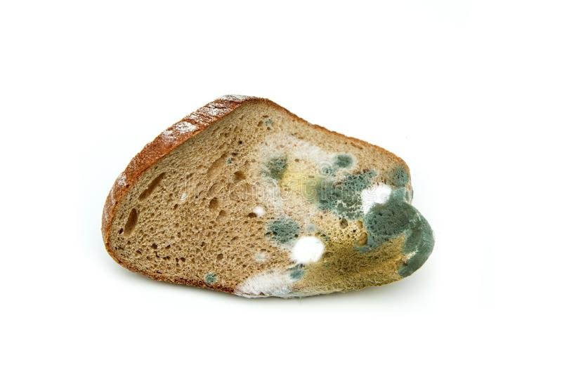 The picture of a mouldy bread royalty free stock image