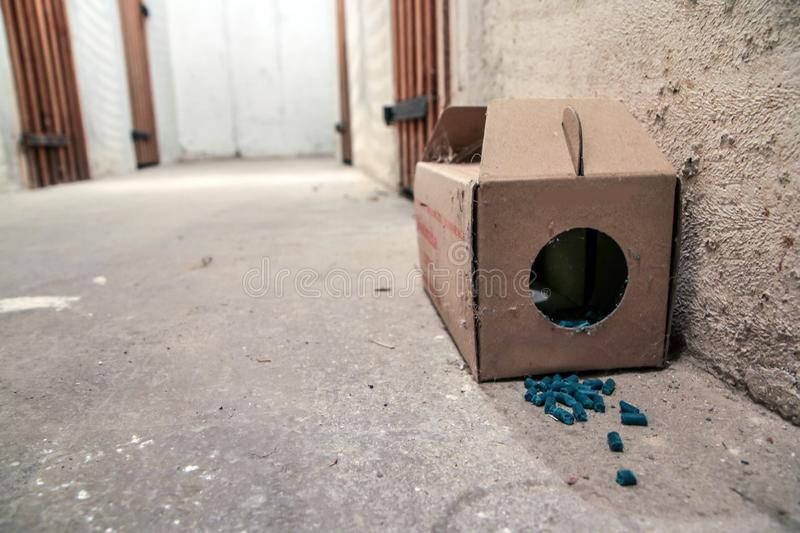 Paper rat trap with some pellets. A picture of a paper rat trap with some pellets with poison outside of the box. Dangerous to touch or eat royalty free stock image