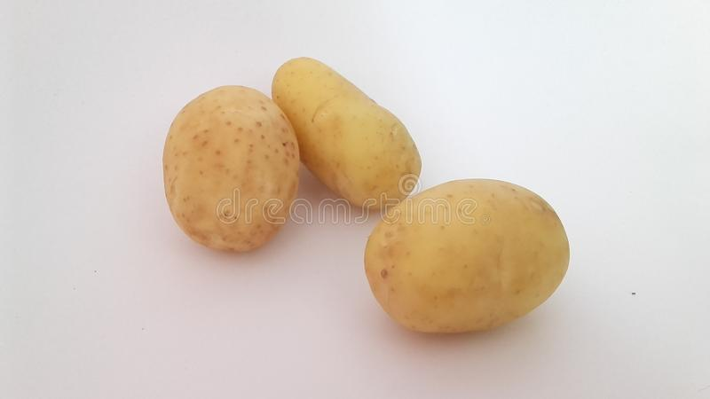Potato. Picture of potato royalty free stock images
