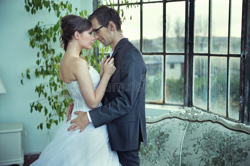 Picture presenting cute wedding couple royalty free stock photos