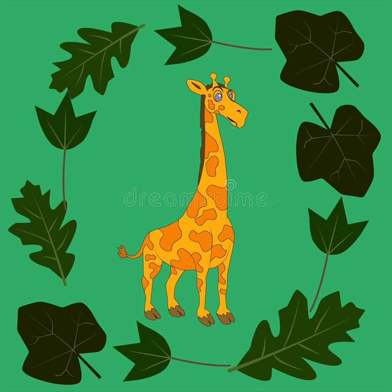 Giraffes on leaves background. The picture shows a background of three giraffes, two adults and one small. Round giraffe leaves. Background for the screen royalty free illustration