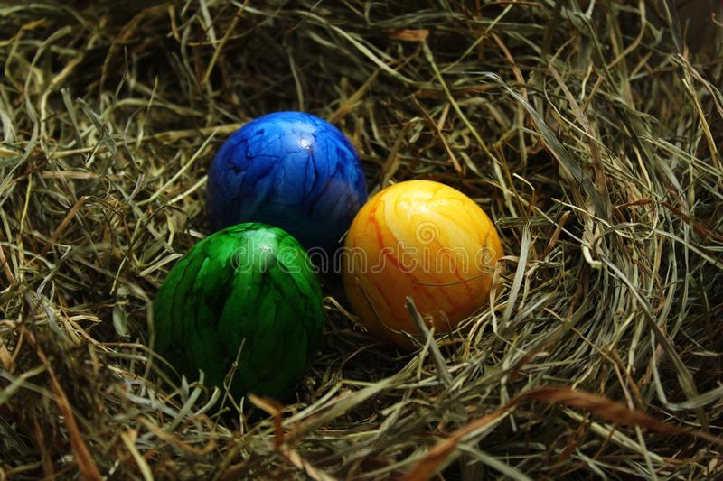 Eastereggs in hay. The picture shows eastereggs in hay royalty free stock photo