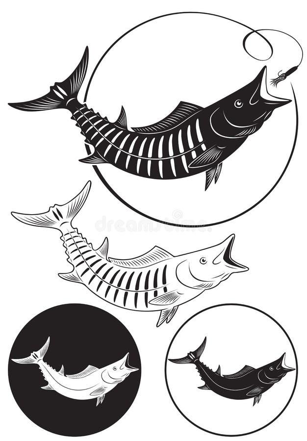 mackerel stock illustration