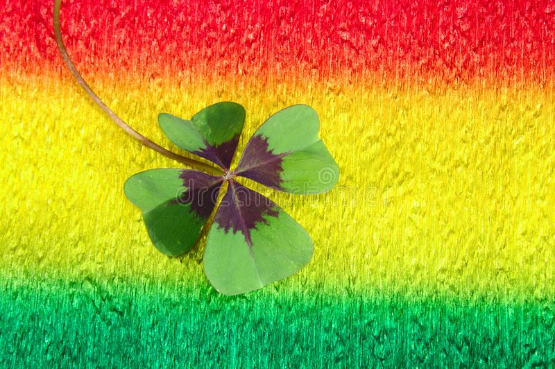 Lucky clover on colorful crepe paper. The picture shows lucky clover on colorful crepe paper royalty free stock images