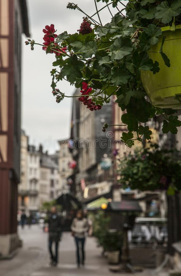 A street in Rouen, France - flowers. The picture shows a street in Rouen, France. It was taken on a gloomy day.There are some potted flowers visible in the stock image