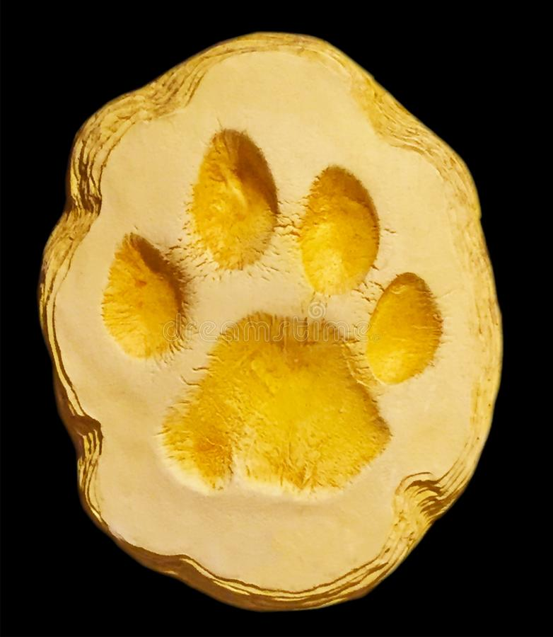 Tiger paw in yellow clay stock illustration