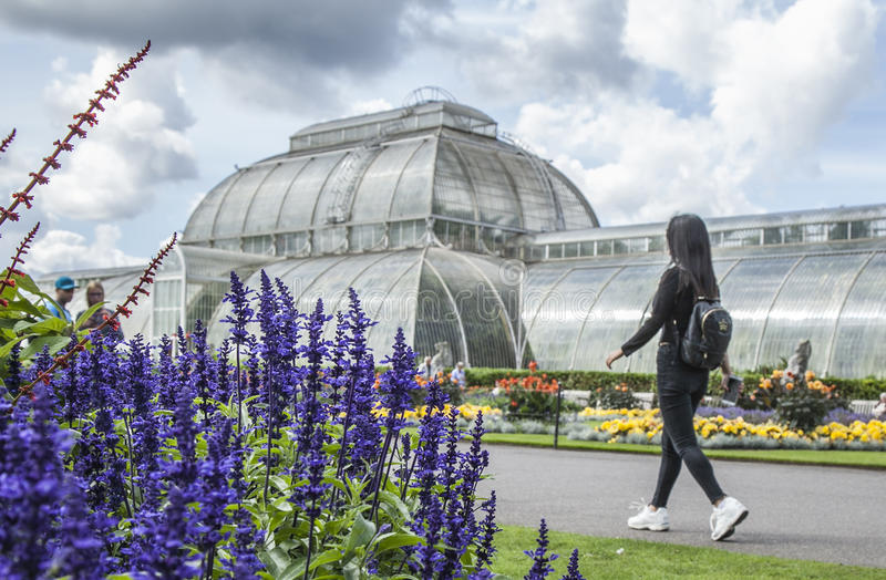 Kew Garden, the tropical greenhouse. royalty free stock image