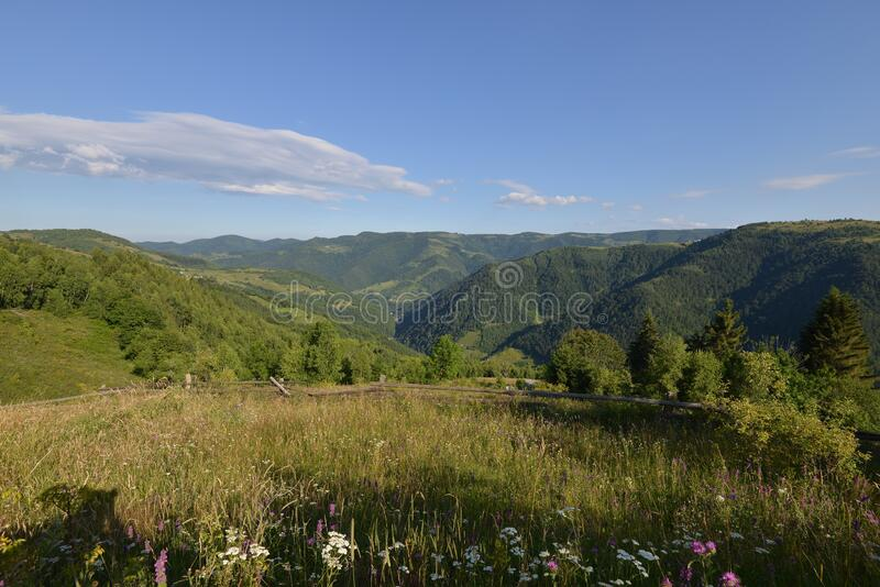 Landscape with the entry to the Maguri-Racatau valley, Romania. stock photos
