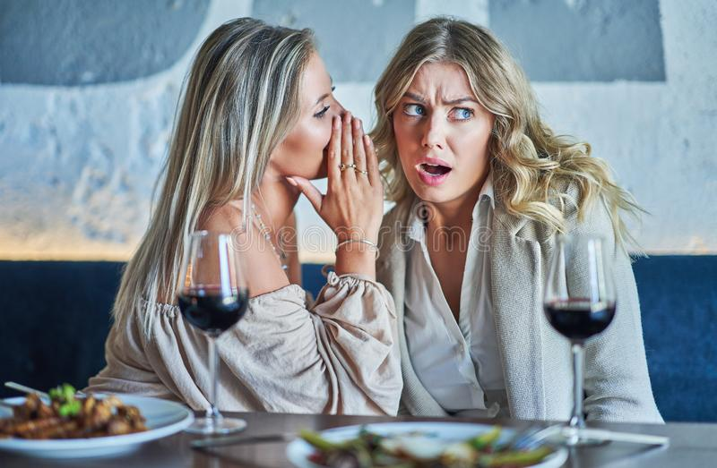 Two girl friends eating lunch in restaurant stock image