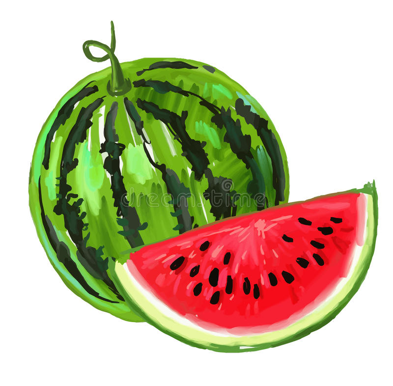 Picture of watermelon royalty free illustration