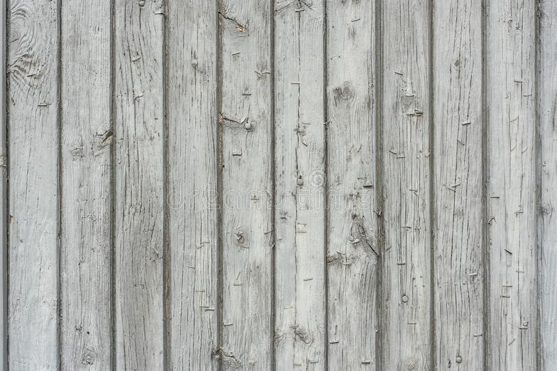 Picture of white natural wood textured background royalty free stock images
