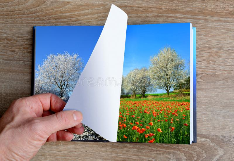 Picture of winter and summer landscape in the book. royalty free stock images