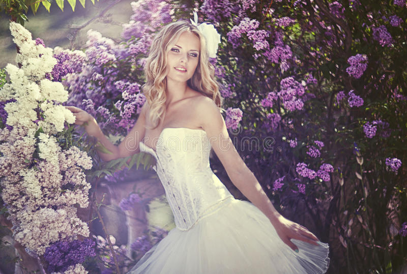 Picture of young woman royalty free stock image