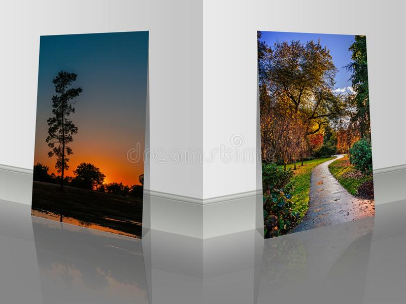Pictures near the wall. colorful bushes and trees in the park an stock image