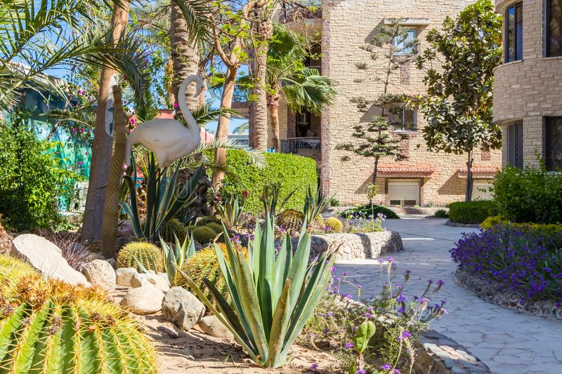 Pictures of a path through the cactus garden with flowers and a decorative statue of a bird royalty free stock photography