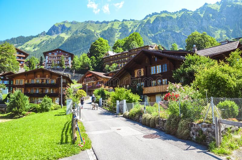 Picturesque Alpine village Wengen in Switzerland in summer season. Mountain chalets, hikers and green hilly landscape. Swiss Alps. Switzerland in summer royalty free stock images