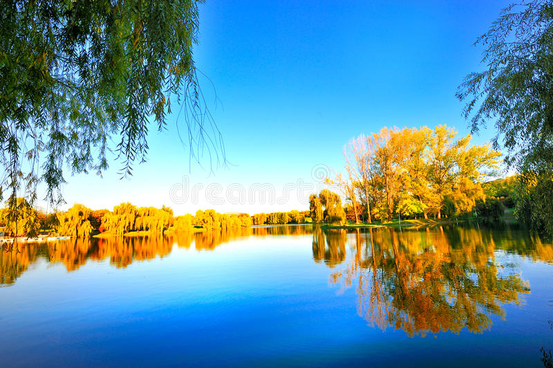 Picturesque autumn landscape stock photo