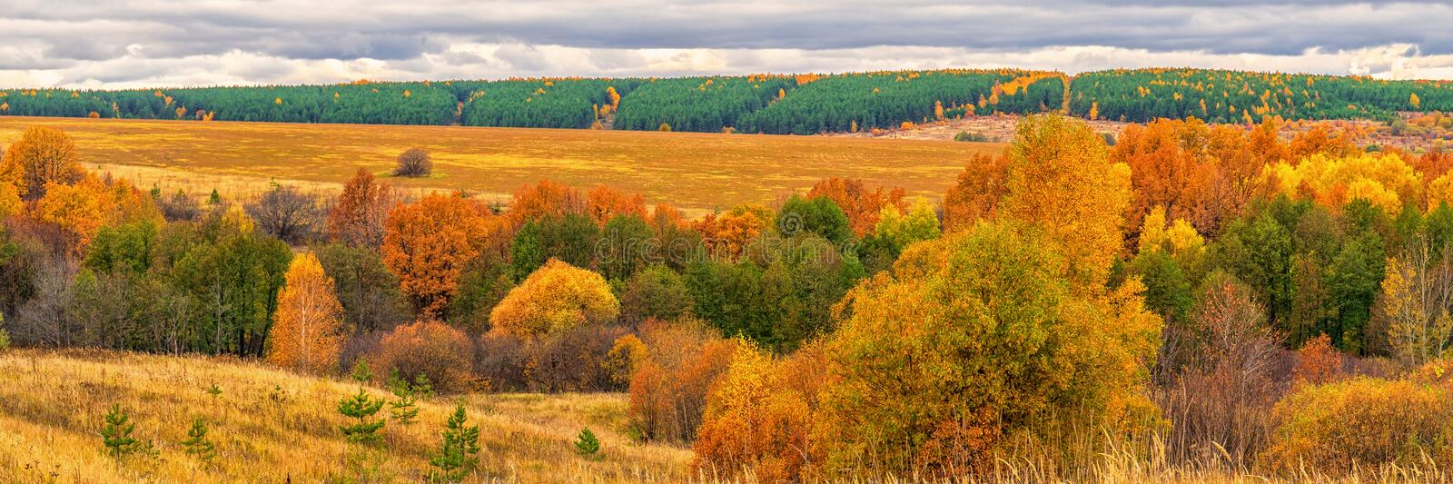Picturesque autumn landscape in green and yellow colors. Panoramic view from hill to lowland with grove and field in cloudy day. royalty free stock images