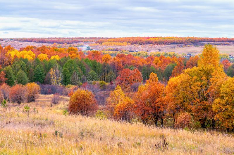 Picturesque autumn landscape in green and yellow colors. Panoramic view from hill to lowland with grove, village and field in royalty free stock photo