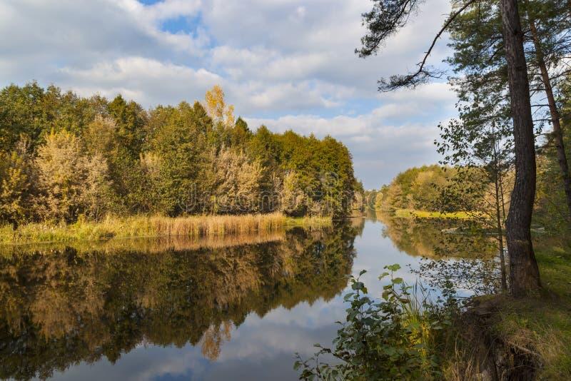 Golden autumn . River landscape royalty free stock image