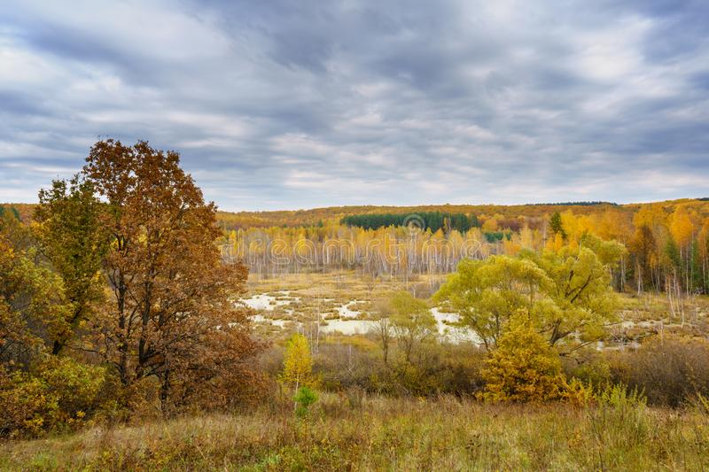 Picturesque autumn landscape. View from the hill to the lowland with forest and swamps. Beautiful natural background royalty free stock image