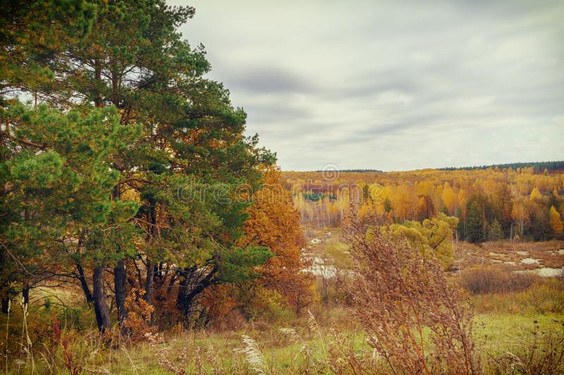 Picturesque autumn landscape. View from the hill to the lowland with forest and swamps. Beautiful natural background royalty free stock photo