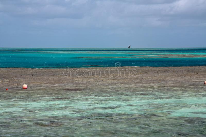 Picturesque blue ocean on Great Barrier Reef royalty free stock photo