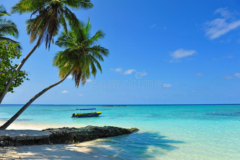 Picturesque clear sea surrounding a Maldivian island. Picturesque clear sea surrounding a Maldivian tropical island royalty free stock photos