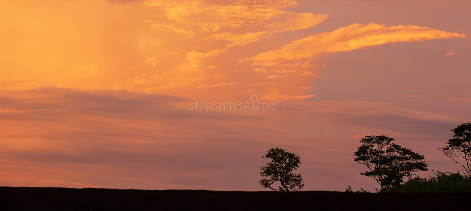 Picturesque cloudscape over a table top mountain at sunset. A tranquil landscape of table top mountain with art shape of wild trees, nature scene in summer royalty free stock photos