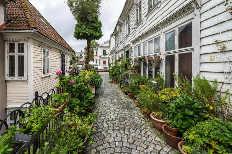 Picturesque cobbled street in Bergen, Norway nicely decorated with plants and flowers. A picturesque cobbled street in Bergen, Norway nicely decorated with royalty free stock image