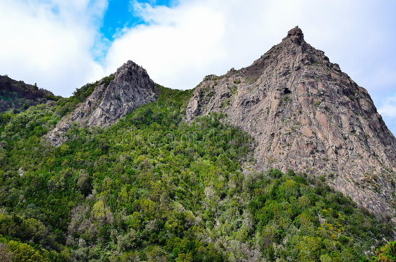 Picturesque forest and the rock. On the island of La Gomera, Canary Islands, Spain stock photos